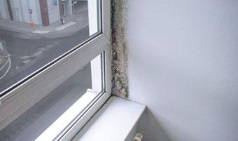 Widoczny przebieg izotermy 13°C. Smuga pleśni wskazuje, gdzie należało zamontować okno