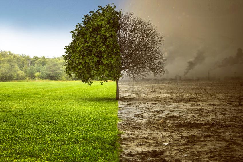 Degradacja środowiska naturalnego