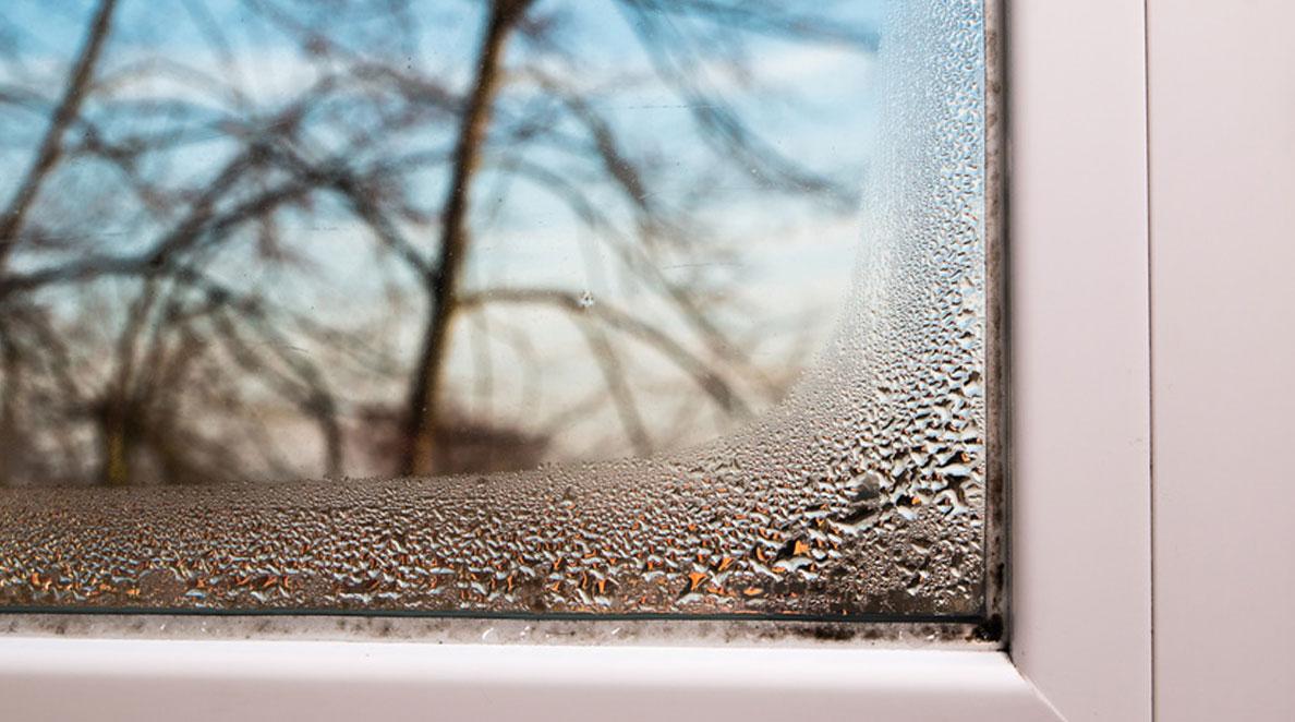 zaparowane okno