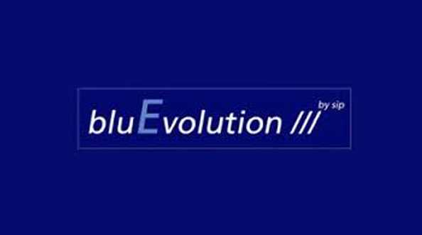 Salamander bluEvolution