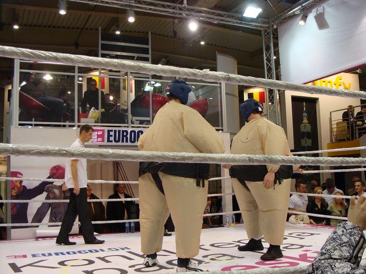 eurocolor budma 2011 zapasy sumo