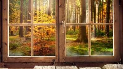 Okna drewniane. Czemu warto je wybrać?